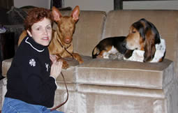 Lynne and dogs